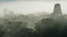 Nebel in Tikal